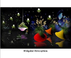 floralies végétal atmosphère naotab design